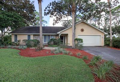 Daytona Beach Single Family Home For Sale: 508 Pelican Bay Drive