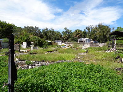 Volusia County Residential Lots & Land For Sale: 1372 Taylor Street