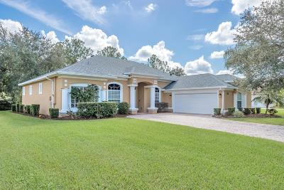 Daytona Beach Single Family Home For Sale: 228 Zaharias Circle