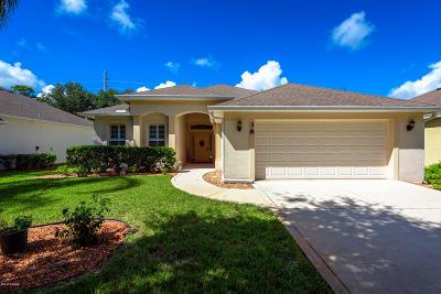 Ormond Beach Single Family Home For Sale: 38 Timucuan Drive