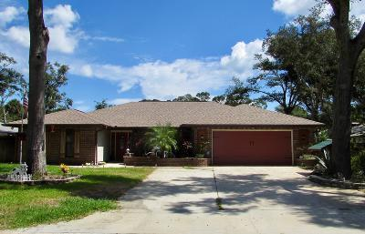 Ormond Beach Single Family Home For Sale: 4 Mill Run Court