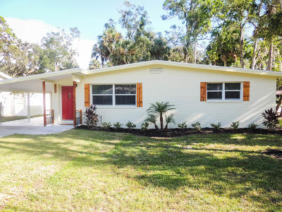 Ormond Beach Single Family Home For Sale: 428 Division Avenue