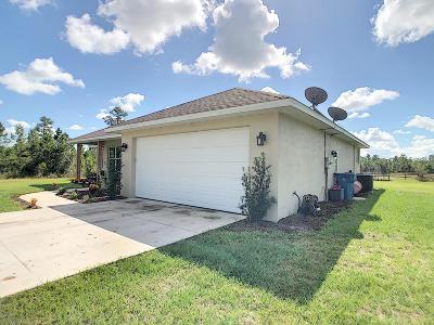 New Smyrna Beach Single Family Home For Sale: 4018 Budd Road