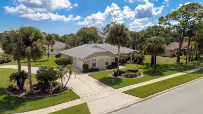 Port Orange Single Family Home For Sale: 4581 Miles Drive