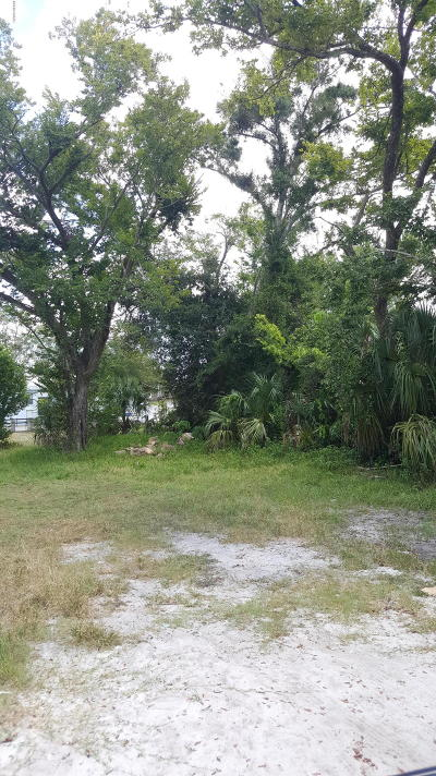 Volusia County Residential Lots & Land For Sale: 395 Jefferson Street