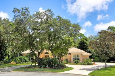 Spruce Creek Fly In Single Family Home For Sale: 2700 Autumn Leaves Drive