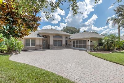 Port Orange Single Family Home For Sale: 1613 Promenade Circle