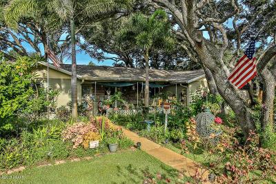 New Smyrna Beach Single Family Home For Sale: 1006 Horton Street