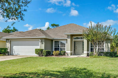 Volusia County Single Family Home For Sale: 324 Perfect Drive