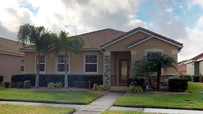 New Smyrna Beach Single Family Home For Sale: 3454 Pegaso Avenue