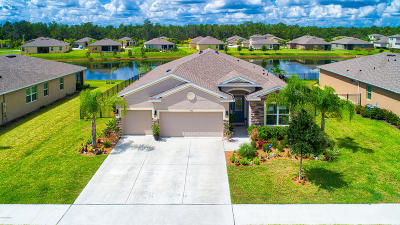 Volusia County Single Family Home For Sale: 446 River Square Lane