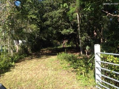 Volusia County Residential Lots & Land For Sale: 2490 Jerry Circle