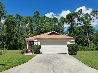 Daytona Beach Single Family Home For Sale: 124 Braeburn Circle