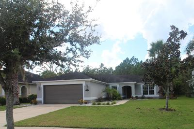 Daytona Beach Single Family Home For Sale: 161 Boysenberry Lane