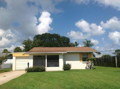 Volusia County Single Family Home For Sale: 51 Palmetto Drive
