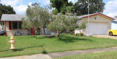 South Daytona Single Family Home For Sale: 2312 Brian Avenue