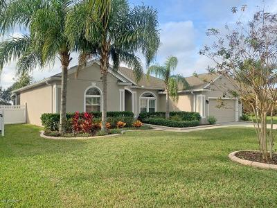 Volusia County Single Family Home For Sale: 691 Grape Ivy Lane