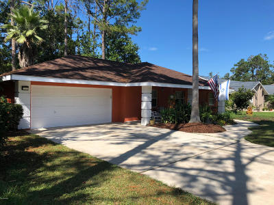 Palm Coast Single Family Home For Sale: 133 Boulder Rock Drive