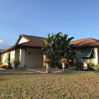 Ormond Beach Single Family Home For Sale: 11 Sand Dollar Drive