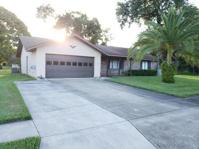 South Daytona Single Family Home For Sale: 808 Scrub Oak Street
