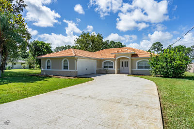 Palm Coast Single Family Home For Sale: 169 Belleaire Drive
