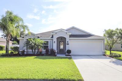 New Smyrna Beach Single Family Home For Sale: 821 Snapdragon Drive