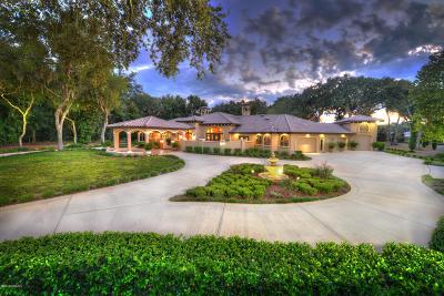 Port Orange Single Family Home For Sale: 6022 S Williamson Boulevard