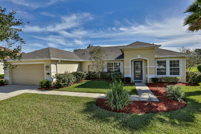 Daytona Beach Single Family Home For Sale: 265 Bayberry Lakes Boulevard
