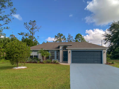 Palm Coast Single Family Home For Sale: 79 Rose Drive