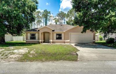 Palm Coast Single Family Home For Sale: 19 Port Royal Drive