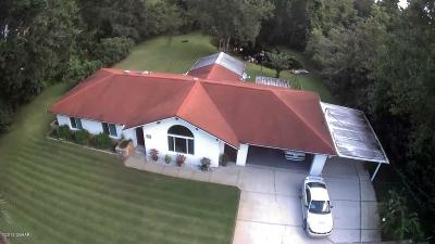 New Smyrna Beach Single Family Home For Sale: 231 S State Road 415
