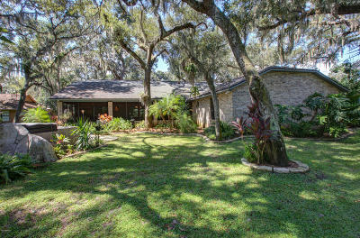 Port Orange Single Family Home For Sale: 411 Oak River Drive