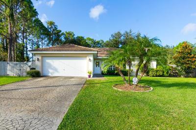 Palm Coast Single Family Home For Sale: 18 Serene Place