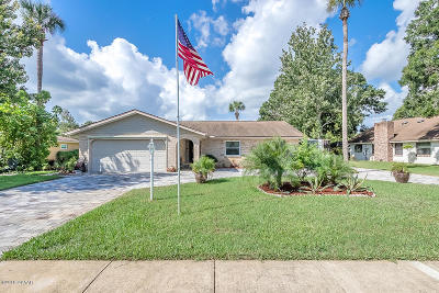 Port Orange Single Family Home For Sale: 809 Black Duck Drive