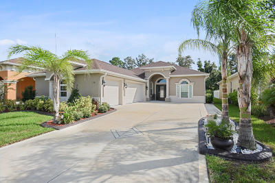 New Smyrna Beach Single Family Home For Sale: 3426 Leonardo Lane