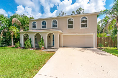 Palm Coast Single Family Home For Sale: 169 Point Pleasant Drive