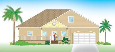New Smyrna Beach Single Family Home For Sale: Williams Road