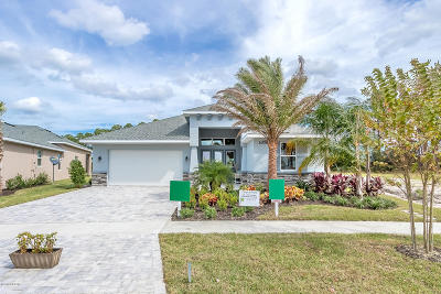 New Smyrna Beach Single Family Home For Sale: 3016 King Palm Dr Lot 128