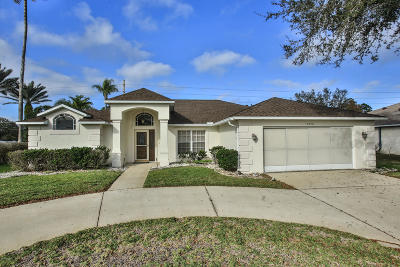 Port Orange Single Family Home For Sale: 5970 Sawgrass Point Drive