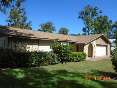 Port Orange Single Family Home For Sale: 971 Sandle Wood Drive
