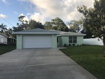 Port Orange Single Family Home For Sale: 414 A S Willow Avenue