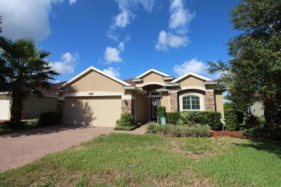 Palm Coast Single Family Home For Sale: 46 Arrowhead Drive