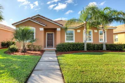 New Smyrna Beach Single Family Home For Sale: 3360 Velona Avenue