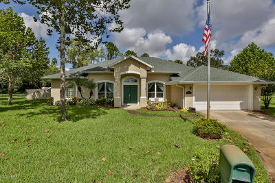 Ormond Beach Single Family Home For Sale: 426 Sand Creek Lane