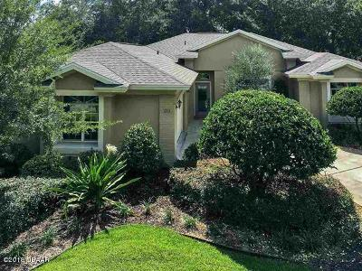 Palm Coast Single Family Home For Sale: 111 Westrobin Lane