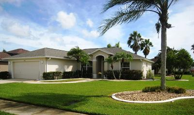 Port Orange Single Family Home For Sale: 6610 Nasser Lane