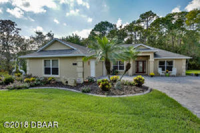 Port Orange Single Family Home For Sale: 1640 Promenade Circle
