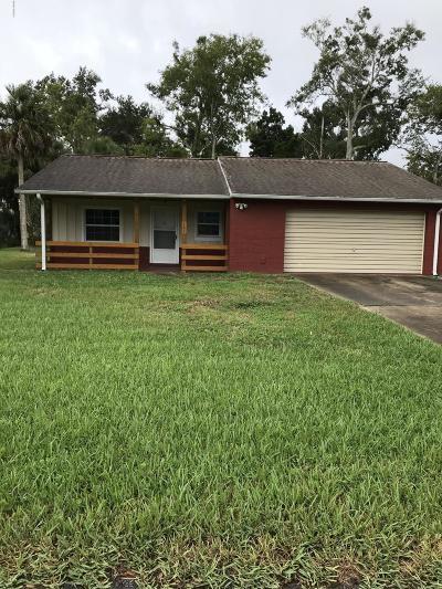 Ormond Beach Single Family Home For Sale: 101 Camino Circle