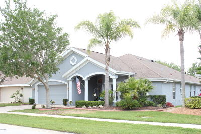 Port Orange Single Family Home For Sale: 1327 Coconut Palm Circle