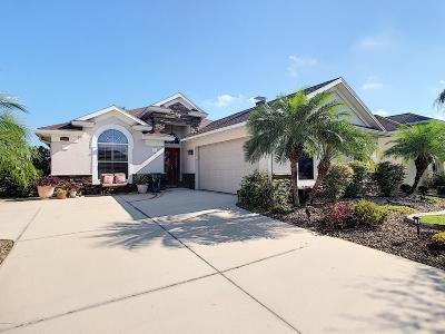 New Smyrna Beach Single Family Home For Sale: 3385 Tesoro Circle